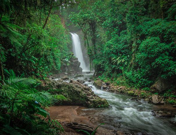 La Paz Waterfall (5)
